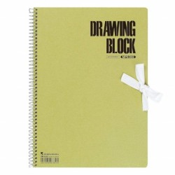 Maruman Olive Series - Drawing Paper Sm 20 Sheets